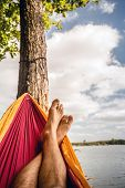 Relaxing In The Hammock At The Beach Under Trees, Summer Day poster