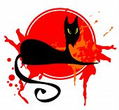 picture of black cat  - The black stylized cat in the red grange frame - JPG