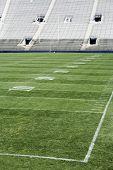 Football Field Vertical