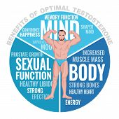 Benefits Of Optimal Testosterone. Beautiful Medical Vector Illustration With Cloud Of Tags Isolated  poster