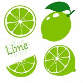 Set Slices Of Lime Isolated On White Background. Vector Illustration. poster