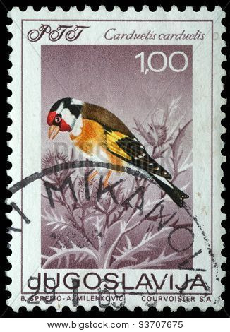 YUGOSLAVIA - CIRCA 1987: A stamp printed in Yugoslavia shows the goldfinch with the inscription