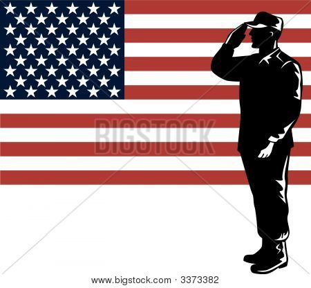 Army Saluting Flag