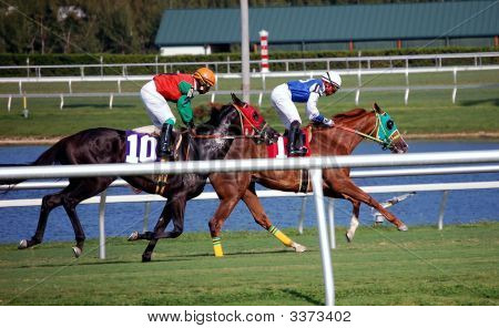 Turf Racers