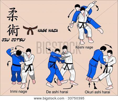 Judo and Jiu jitsu Martial art Techniques