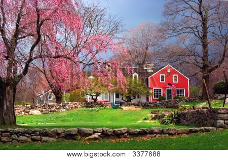 Farmhouse In Spring