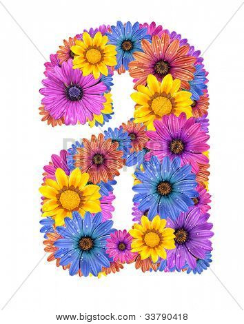 Alphabet of colorful dewy flowers A