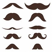 Mustache, Set Of Male Brown Mustache Isolated On White. Vector Mustache Illustration In Flat Design. poster