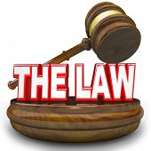 Words The Law on a wooden block with judge's gavel hovering over it, symbolizing, authority, jurisdi