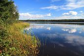 Wilderness Forest Lake. Clouds Reflected On The Surface Of A Pristine Northern Michigan Wilderness L poster