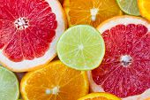 picture of tangelo  - Sliced citrus fruits - JPG