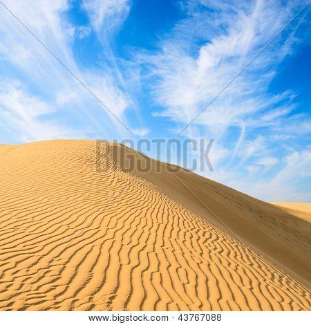 Gold Dunes In Great Indian Desert