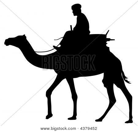 Cameleer