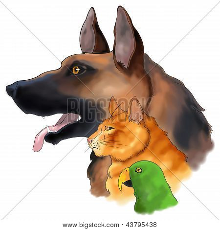 Three Pets Looking Forward In A Column (vector)