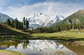 stock photo of karakoram  - Nanga Parbat reflected in a pond at Fairy Meadows - JPG