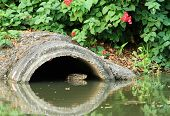 Drainage Pipe With Water Monitor