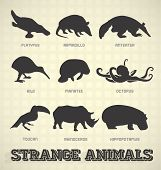 stock photo of armadillo  - Collection of strange and odd animal silhouettes - JPG