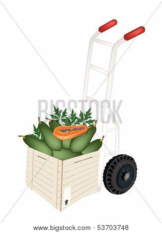 A Hand Truck Loading Papayas In Shipping Box