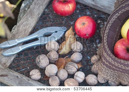 Autumnal Gifts
