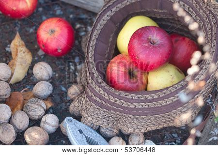 Red Apples In The Bonnet And Walnuts