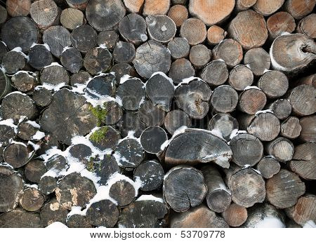 Old Logs With Show Background Texture