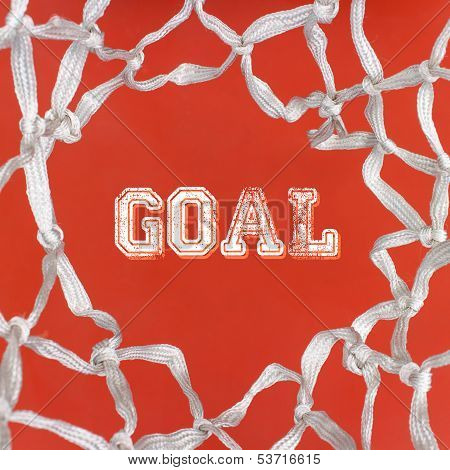 Net And Goal
