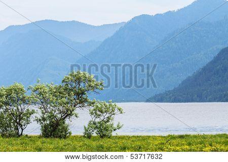 The Clean Fresh Lake