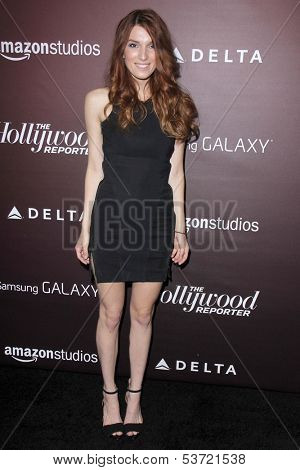LOS ANGELES - NOV 6:  Dani Thorne at the Hollywood Reporter's Next Gen 20th Anniversary Gala at Hammer Museum on November 6, 2013 in Westwood, CA