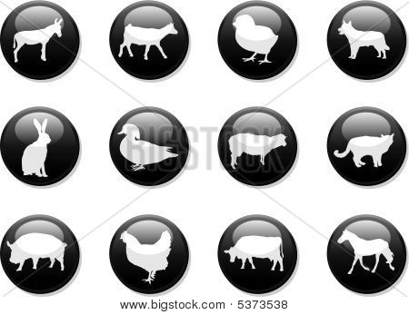 Farm Animals Buttons