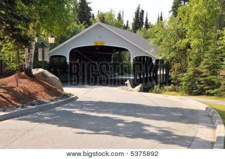 Covered Bridge In Summer