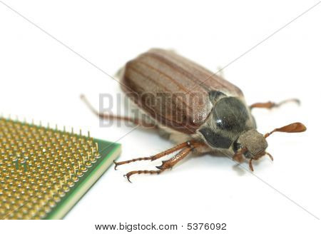 Microchip Bug