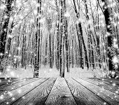 stock photo of snow forest  - Christmas snow on the wood textured backgrounds - JPG