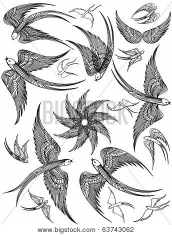 Vector set of Swallows.