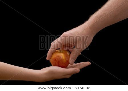 Hands & Apple