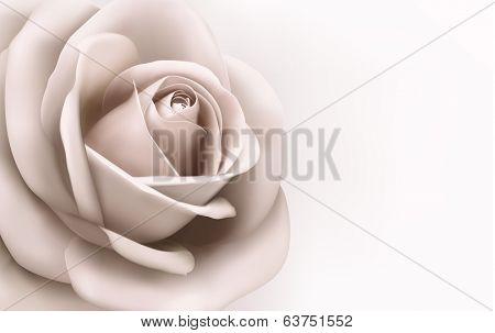 Vintage background with a beautiful pink rose.  Raster version