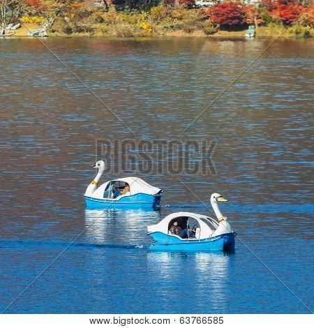 Swan Paddle Boat at Lake Kawaguchiko in Japan