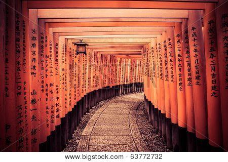 Path Through The Gates