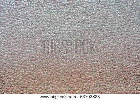 Abstract Painted Textures Of Skin Gray Color