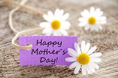 picture of timber  - A Purple Label with Happy Mothers Day on it - JPG