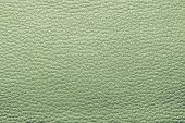 pic of pale skin  - abstract background from the painted texture of skin and leather fabric green color - JPG