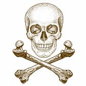 pic of skull crossbones flag  - vector engraving illustration of skull and crossbones on white background - JPG