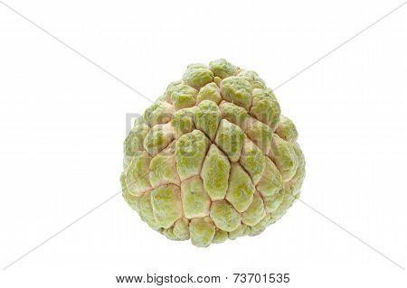Custard Apple Fruit Isolated On White Background.