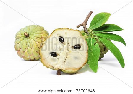 Custard apple fruit with leaves isolated on white background