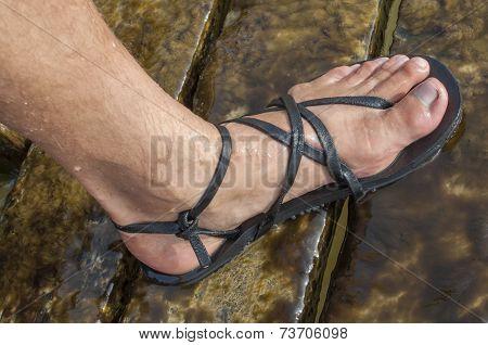 Minimalist Sandal