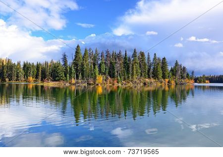 Forest And Lake In Autumn