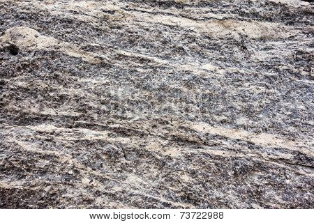 Muddy Texture Of A Stone Surface