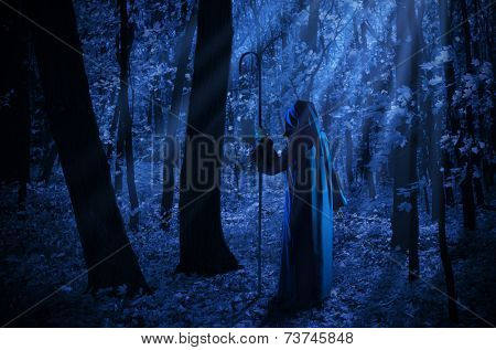Witch at night in the moonlight forest