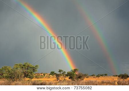 Desert landscape with a colorful rainbow in stormy sky, Kalahari, South Africa