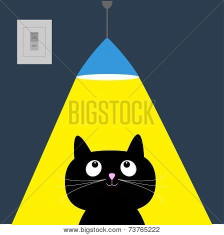 Black cat and ceiling light lamp. Yellow ray of light. Flat design.