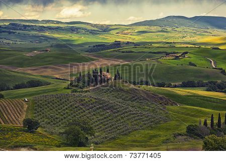 farmer estate with vineyards at sunrise in San Quirico d'Orcia